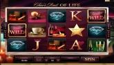 Cliquez ici pour jouer à la machine à sous Vidéo: The Finer Reels of Life en version Flash...